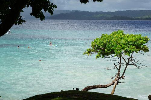 levantado island caribbean