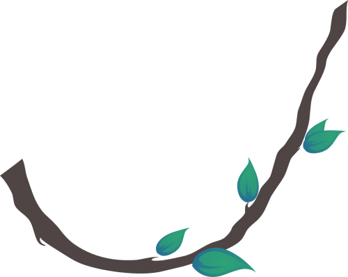 liana leafs plant