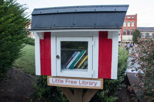 library little library books