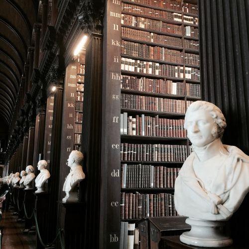 library library books bookshelf