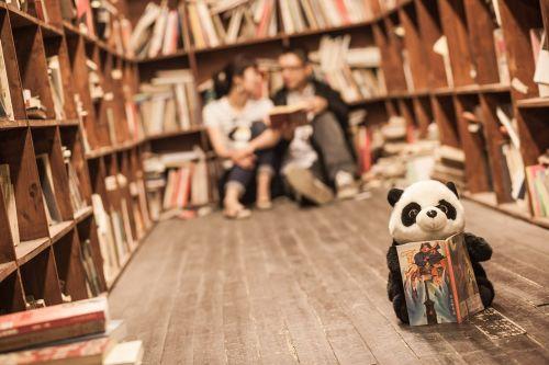 library couples panda