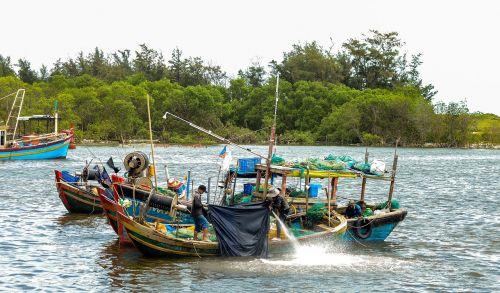 life the sea vung tau