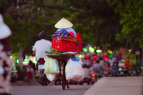 life  garbage  collector