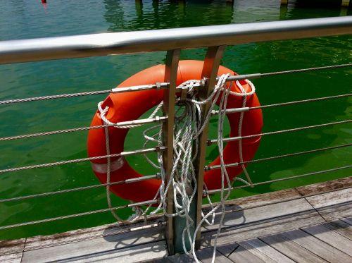 life buoy life saver buoy