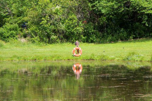 Lifesaver Reflection