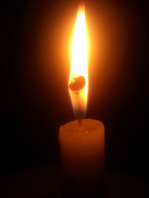 šviesa,kandelė,melstis