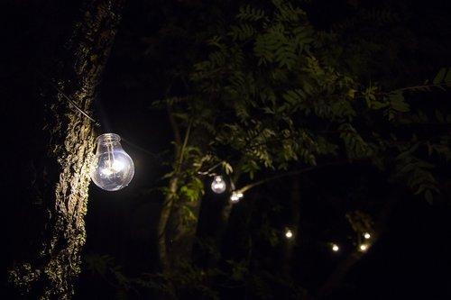 light  lamp  light bulb