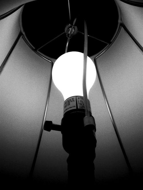 light shade black and white