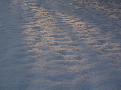 light sunlight snow