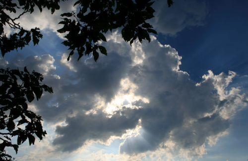dangus, debesys, šviesa, tamsi, šviesus, lapija, šviesūs ir tamsūs lapai su debesimis