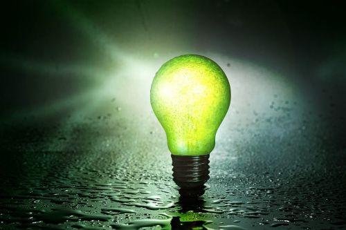light bulb fruit pear