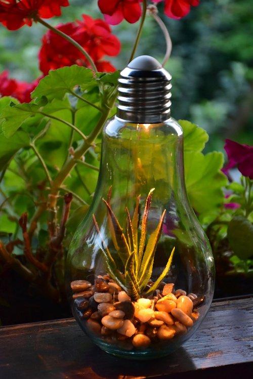 light bulb  lamp  decoration