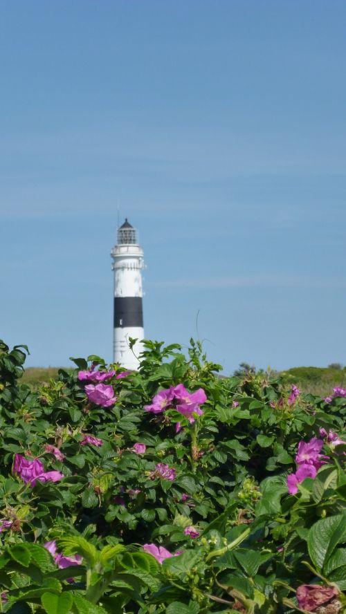 lighthouse north sea nordfriesland