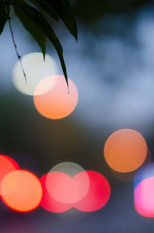 lights bokeh night