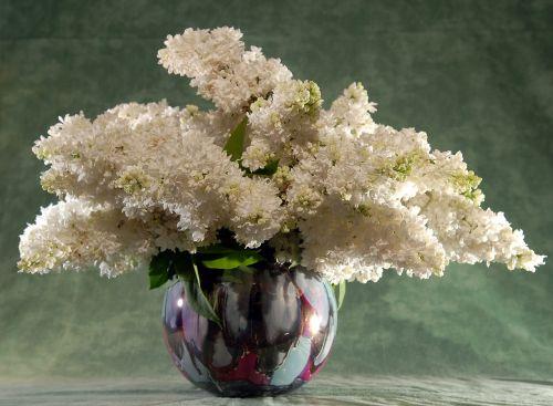 lilac bouquet flowers