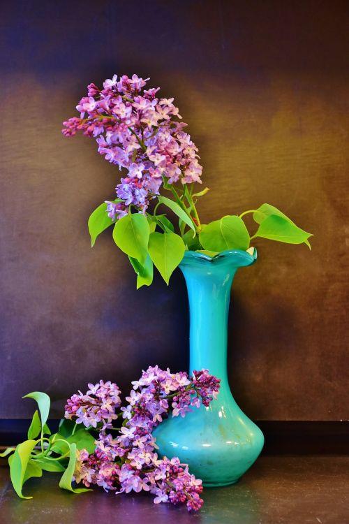 lilac lilac bouquet flowers