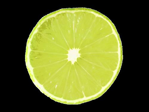 lime slice lime slice