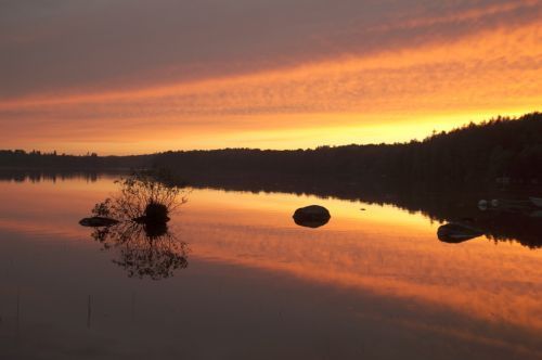 linden lake smaland