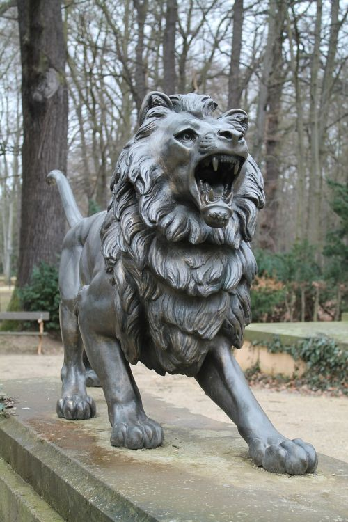 lion roar bronze