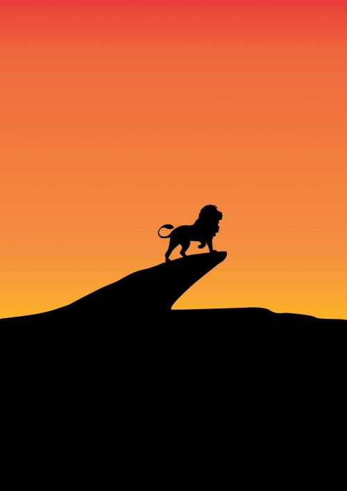lion sunset wildlife