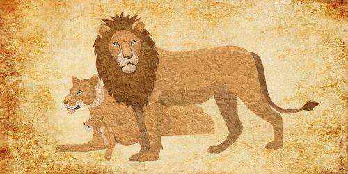 lion animal vintage