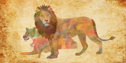 lion animal pets