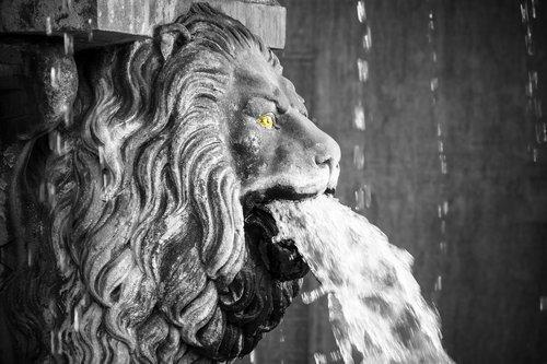 lion  lion head  gargoyle