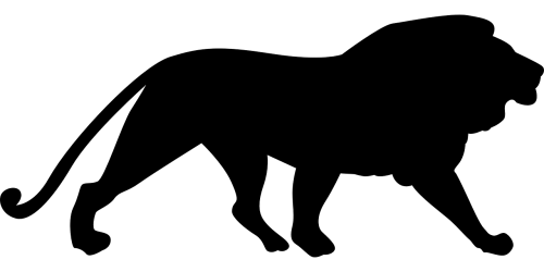 lion silhouette mammal