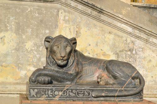 lion rome italy