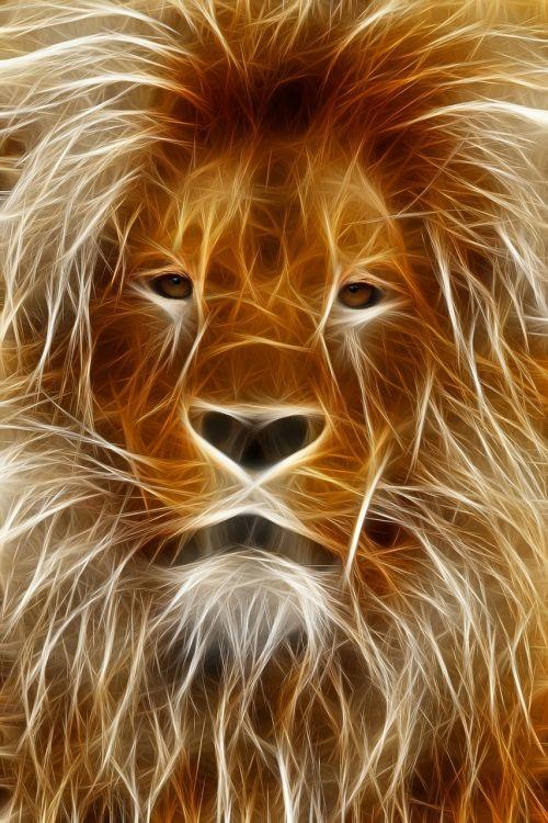 lion image editing graphic