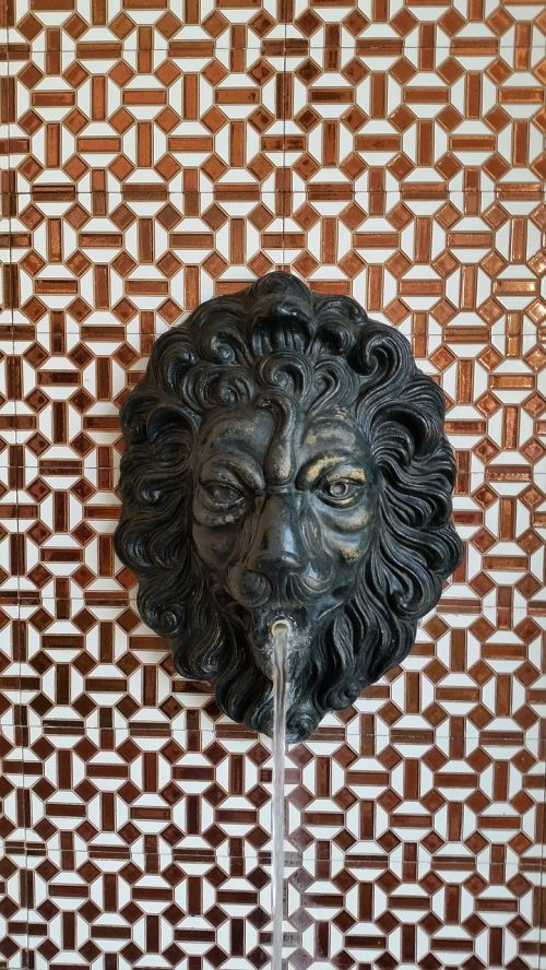 lion head gargoyle lion
