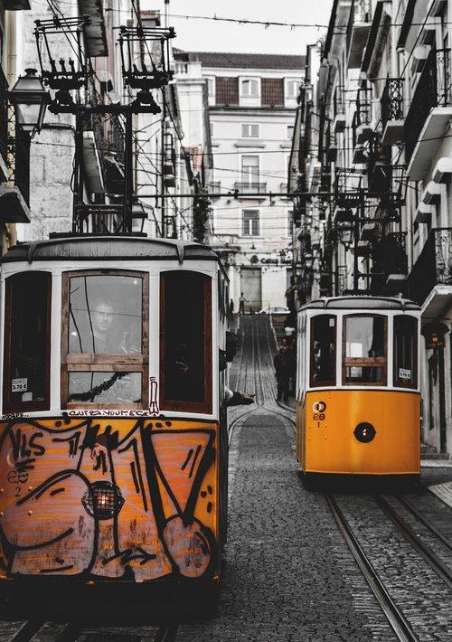 lisbon  trams  tram
