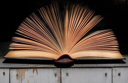 literature book open