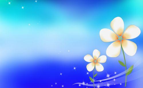 little flower blue background