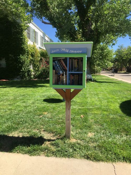 little free library rotary books