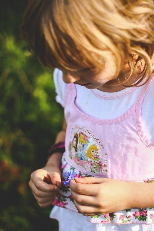 maža mergaitė,mažai,mergaitė,Moteris,vaikas,vaikas,blondinė,jaunas,rankos,gėlė,atrodo,atrodo,žemyn,vaikystę,sodas
