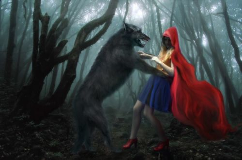 little red riding hood wolf forest