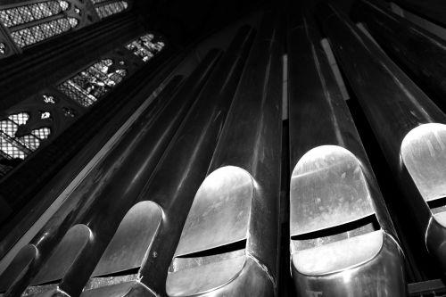 liturgical organ pipe organ reeds
