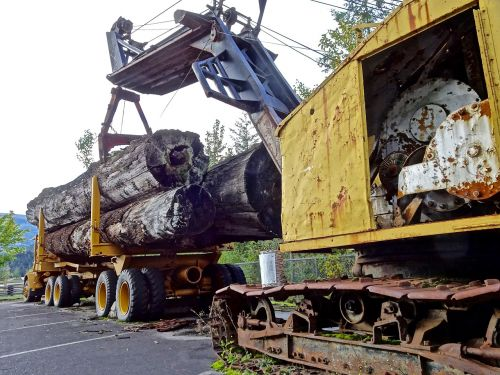 loading lumber timber truck