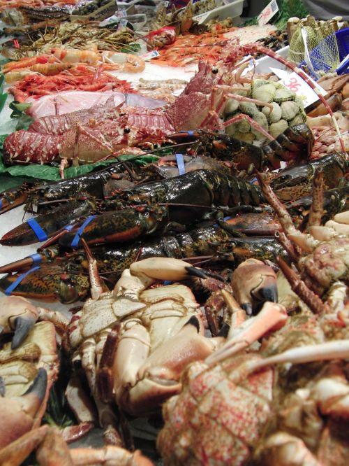 lobster crab seafood