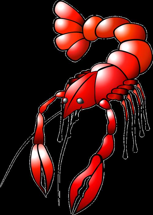 lobster crayfish animal