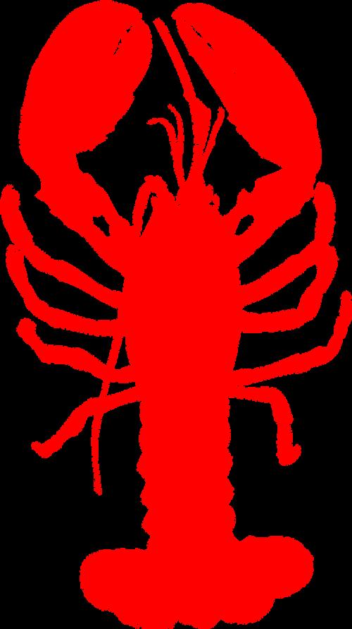lobster shellfish seafood