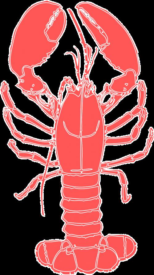 lobster crustacean crab
