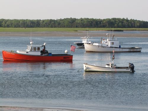 lobster boats pine point maine