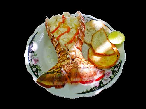 lobster dish food seafood