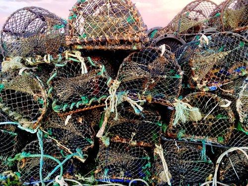 lobster pots  fishing  port