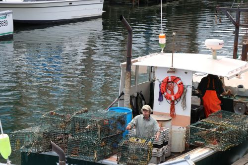lobster traps lobster fishing boat portland maine