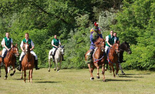 locust ride horse casel