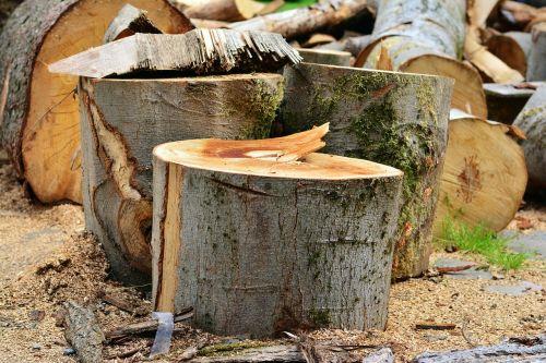 log wood wood beat