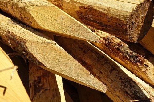 log  wood  cut